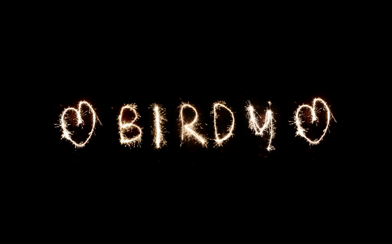 Birdy's Diary